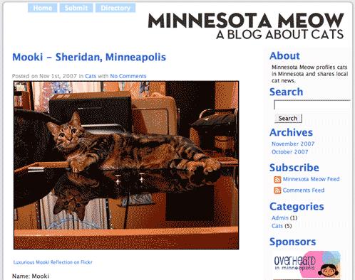 Minnesota Meow