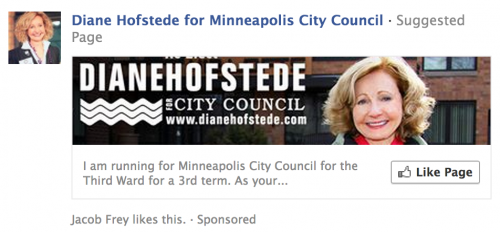Diane Hofstede Ad on Facebook